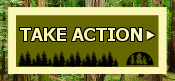 Take Action to protect California's forests now!