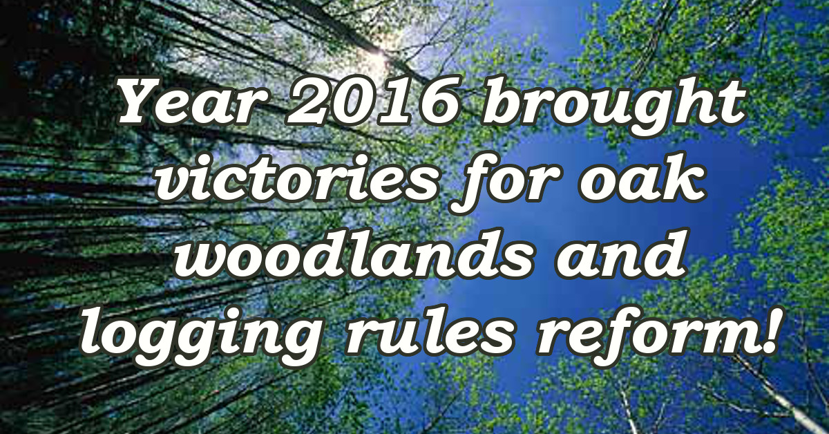 Year 2016 brought victories for oak woodlands and logging rules reform!