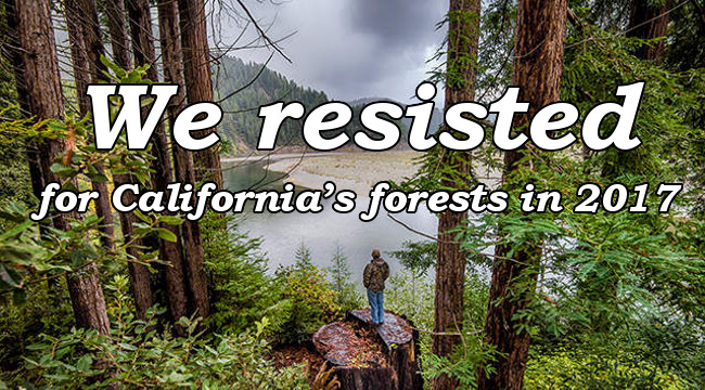 We resisted for California's forests in 2017