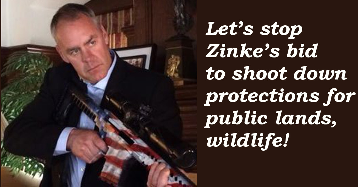 Let's stop Zinke's bid to shoot down protections for public lands, wildlife!