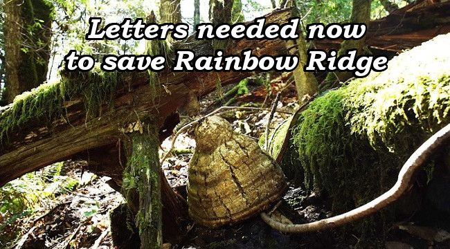 Letters needed now to save Rainbow Ridge