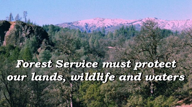 Forest Service must protect our lands, wildlife and waters
