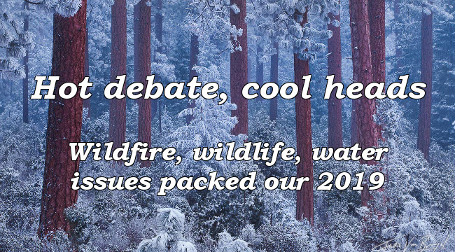 Hot debate, cool heads. Wildfire, wildlife, water issues packed our 2019