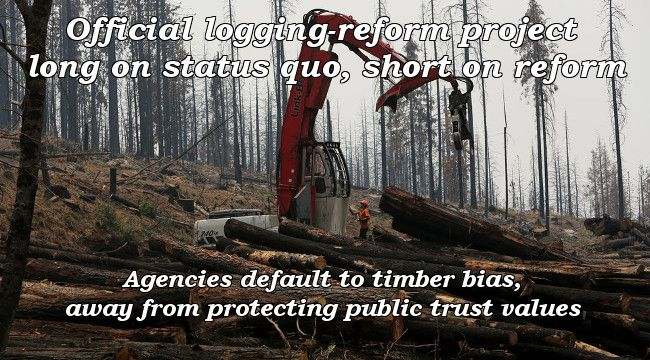 Official logging-reform project long on status quo, short on reform. Agencies default to timber bias, away from protecting public trust values