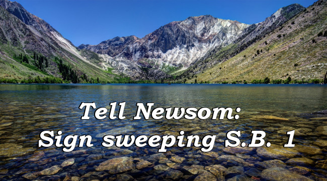 Tell Newsom: Sign sweeping S.B. 1!