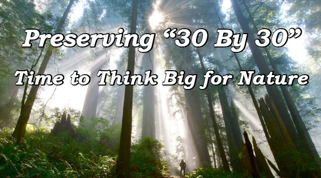 Preserving '30 By 30' Time to Think Big for Nature
