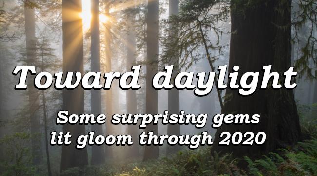 Toward daylight - Some surprising gems lit gloom through 2020