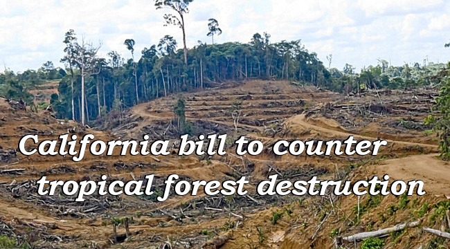 Help California save tropical forests