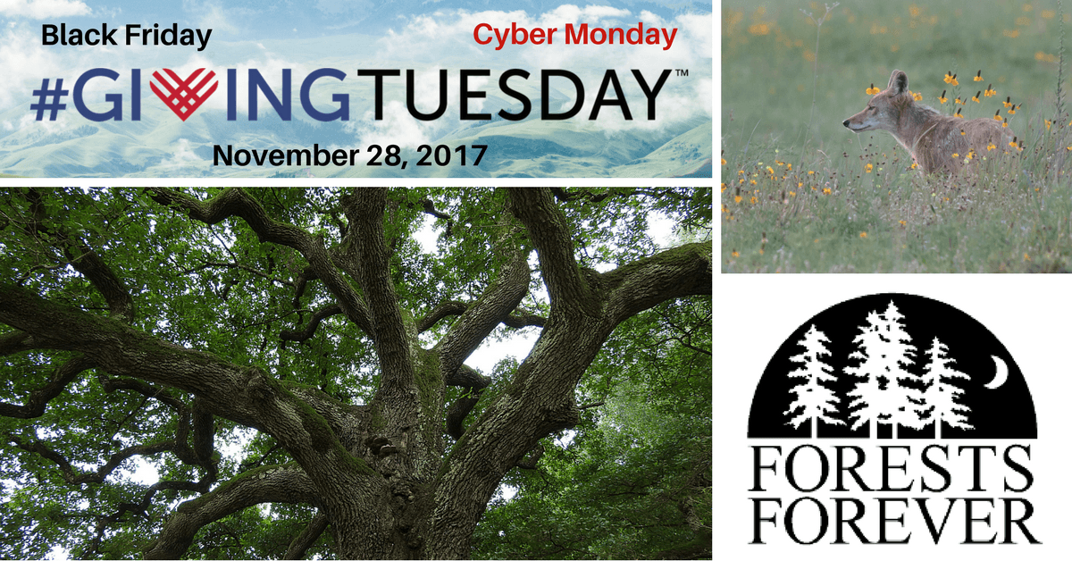 After Black Friday and Cyber Monday comes #GivingTuesday. Please save the date Nov. 28, 2017
