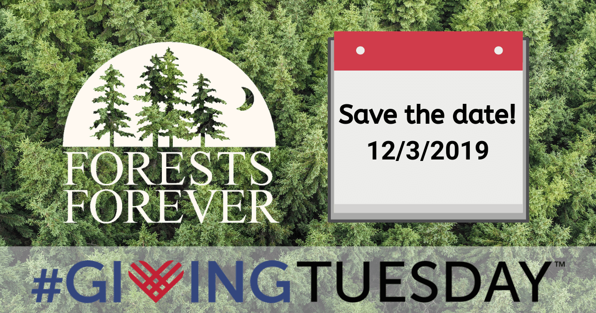 Save the date 12/3/2019 Giving Tuesday