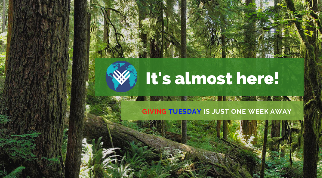 It's almot here! Giving Tuesday is just one week away.