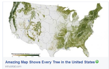 Amazing Map Shows Every Tree in the United States